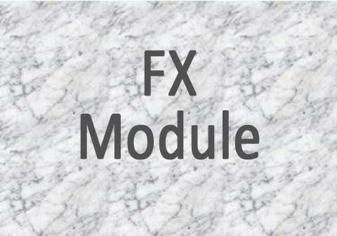 Foreign Fxchange Module