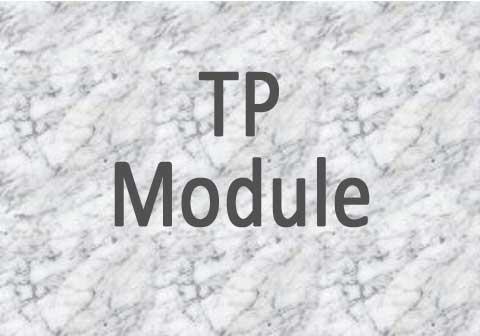 Transaction Processing Module